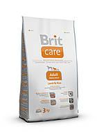 Корм для собак Brit Care Adult Medium Breed Lamb & Rice 3 кг, брит для собак средних пород с ягненком и рисом