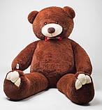 Плюшевий ведмедик Mister Medved Бурий 2 м 50 см, фото 3