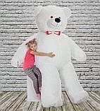 Плюшевий ведмедик Mister Medved Білий 2 м 50 см, фото 2