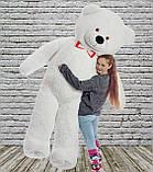 Плюшевий ведмедик Mister Medved Білий 2 м 50 см, фото 4