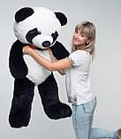 Плюшевий ведмедик Mister Medved Панда 135 см, фото 2