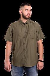 Чоловіча сорочка з коротким рукавом Lerros 205 кольору хакі