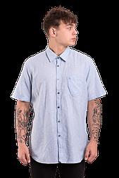 Мужская рубашка с коротким рукавом  Lerros 206 голубая