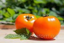 "Вкусный помидор-томат "" Хурма "" семена"
