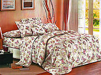 Набор постельного белья бязь №пл58 Двойной, фото 1