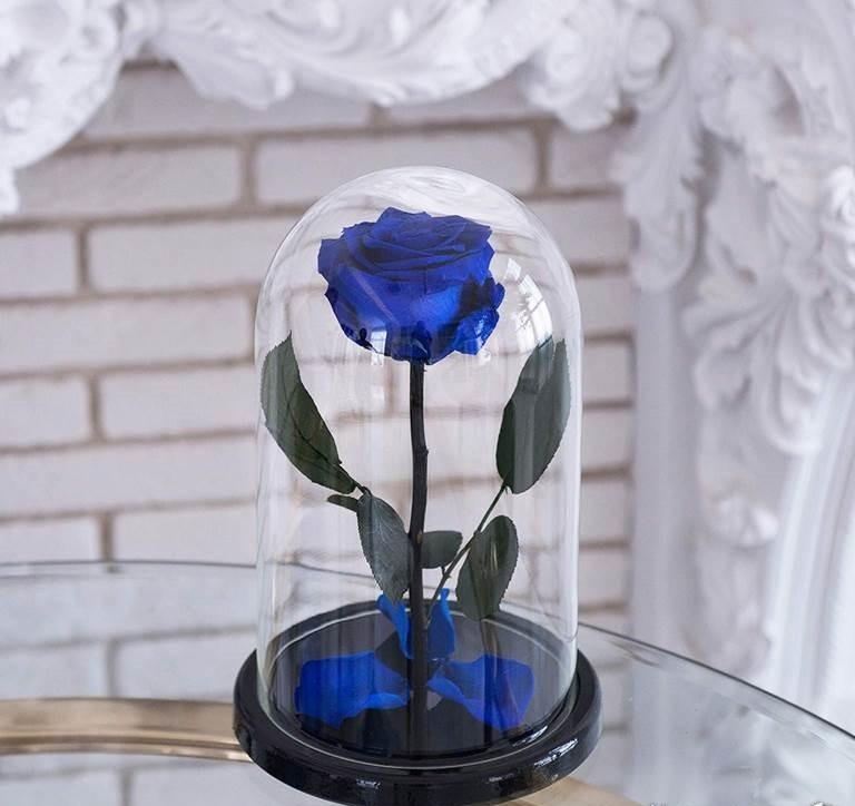 Стабилизированная роза в колбе Lerosh - Standart 33 см,  Синий