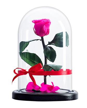 Стабилизированная роза в колбе Lerosh - Mini 27 см,  Ярко розовый