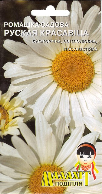 Семена цветов Ромашка садовая Русская красавица 0.5г (Малахiт Подiлля)