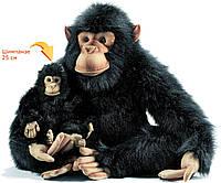 Hansa Шимпанзе 25 cm, фото 1