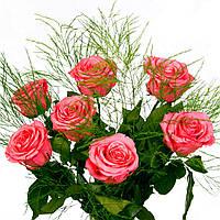 Букет из 7 долгосвежих роз FLORICH РОЗОВЫЙ КВАРЦ 5 карат короткий стебель