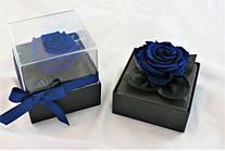 Стабилизированный бутон роза в колбе Lerosh - Standart,  Синий
