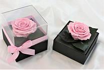 Стабилизированный бутон роза в колбе Lerosh - Standart,  Нежно Розовый