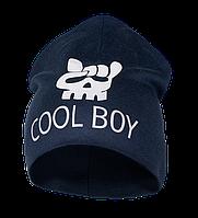 Детская шапка для мальчика GSK-20-8