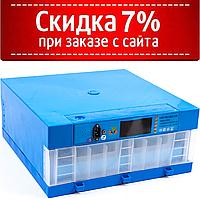 Инкубатор Говорун-64 программируемый (роликовый поворот, с овоскопом) 12/220 В