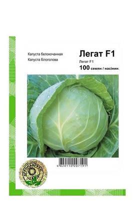 Семена Капуста белокочанная Легат F1 100 сем Clause 2604, фото 2