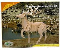 Благородный олень - сборная 3Д модель купить (3 пластины)
