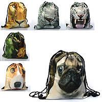Сумка MK 2167 (100шт) рюкзак для обуви,1отдел. на затяжке,6вид(животные,динозавр),в кульке,35-42см