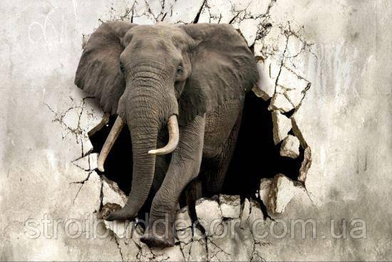 Фотообои 3Д слон разные текстуры , индивидуальный размер