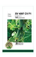 Семена Огурец самоопыляемый SV 4097 CV F1 100 сем Seminis 2612
