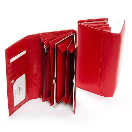 Кошелек Classic кожа DR. BOND W1-V red, фото 2