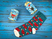 Яскраві консервовані шкарпетки Кохання надає крила