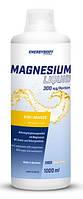 Магній EnergyBody Systems Magnesium liquid 1000 ml