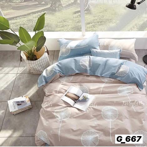 Постельное белье семейное высокого качества бязь голд, фото 2