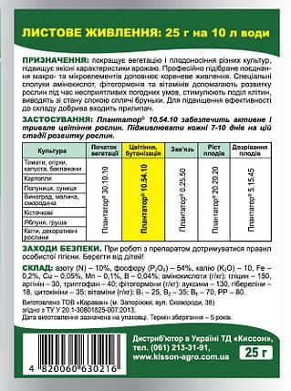 Удобрение Плантатор 10.54.10 25 г Восор 1462, фото 2