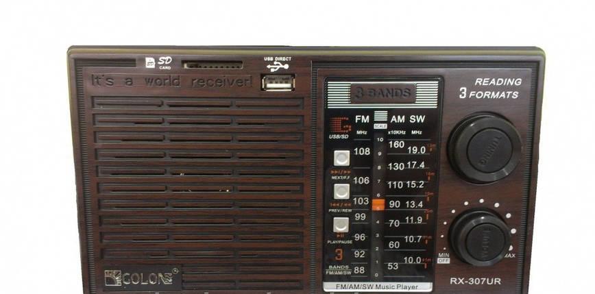 Радиоприемник Golon RX-307UR jack 3.5 мм AUX-вход USB Встроенный аккумулятор корпус Пластик, фото 2