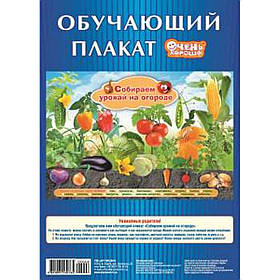 "Плакат А2 ""Собираем урожай на огороде"" 081018"