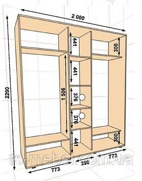 Шкаф-купе 2000*450*2200, 3 двери (Алекса)