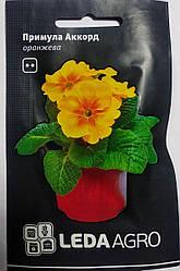 Семена Примула Акорд F1 оранжевая 10шт ТМ LEDAAGRO