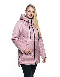 Куртка женская от производителя 50- 66 пудра