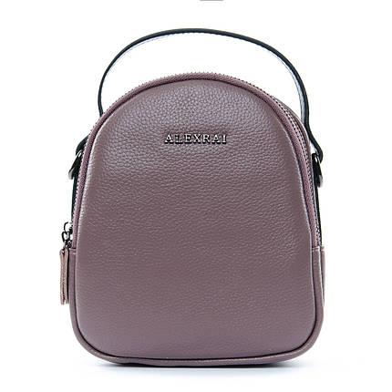 Сумка Женская Клатч кожа ALEX RAI 1-02 3902-3 purple, фото 2
