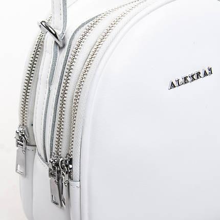 Сумка Женская Клатч кожа ALEX RAI 2-01 2228 pure, фото 2