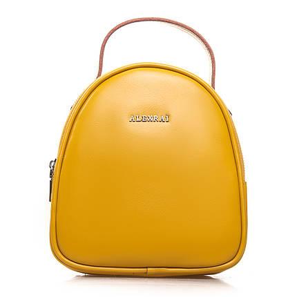 Сумка Женская Клатч кожа ALEX RAI 2-01 2228 yellow, фото 2