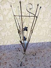 Парасольник кованый, фото 3