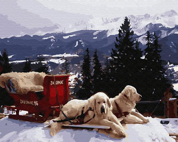 Картина по номерам 40*50см. Рождество в Закопане GX33195 Brushme, фото 2
