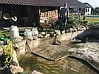 Чищення ставків, очищення водойм, сезонний догляд за ставком, фото 10