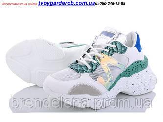 Жіночі кросівки AESD р36-41( код 2021-00)