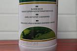 Масло для дерева (На основе льняного масла), Linella, 1 litre, Vincents Polyline, фото 3