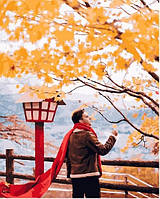Картина по номерам Красный шарф в осенней Японии - 229109