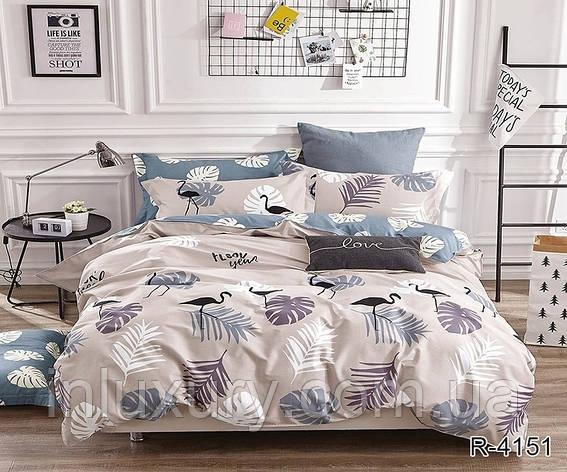Комплект постельного белья с компаньоном R4151, фото 2