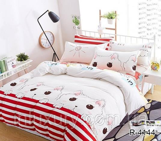 Комплект постельного белья с компаньоном R4144, фото 2