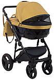 Универсальная детская коляска 2 в 1 Bair Crystal 100% кожа BC-40 золото перламутр - черный, фото 5