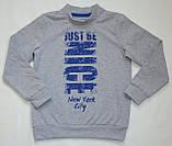 Дитячий джемпер для хлопчика DG-19-35-2 *Написи* (Розміри: 104, 110, 116) Колір - Сірий, фото 2
