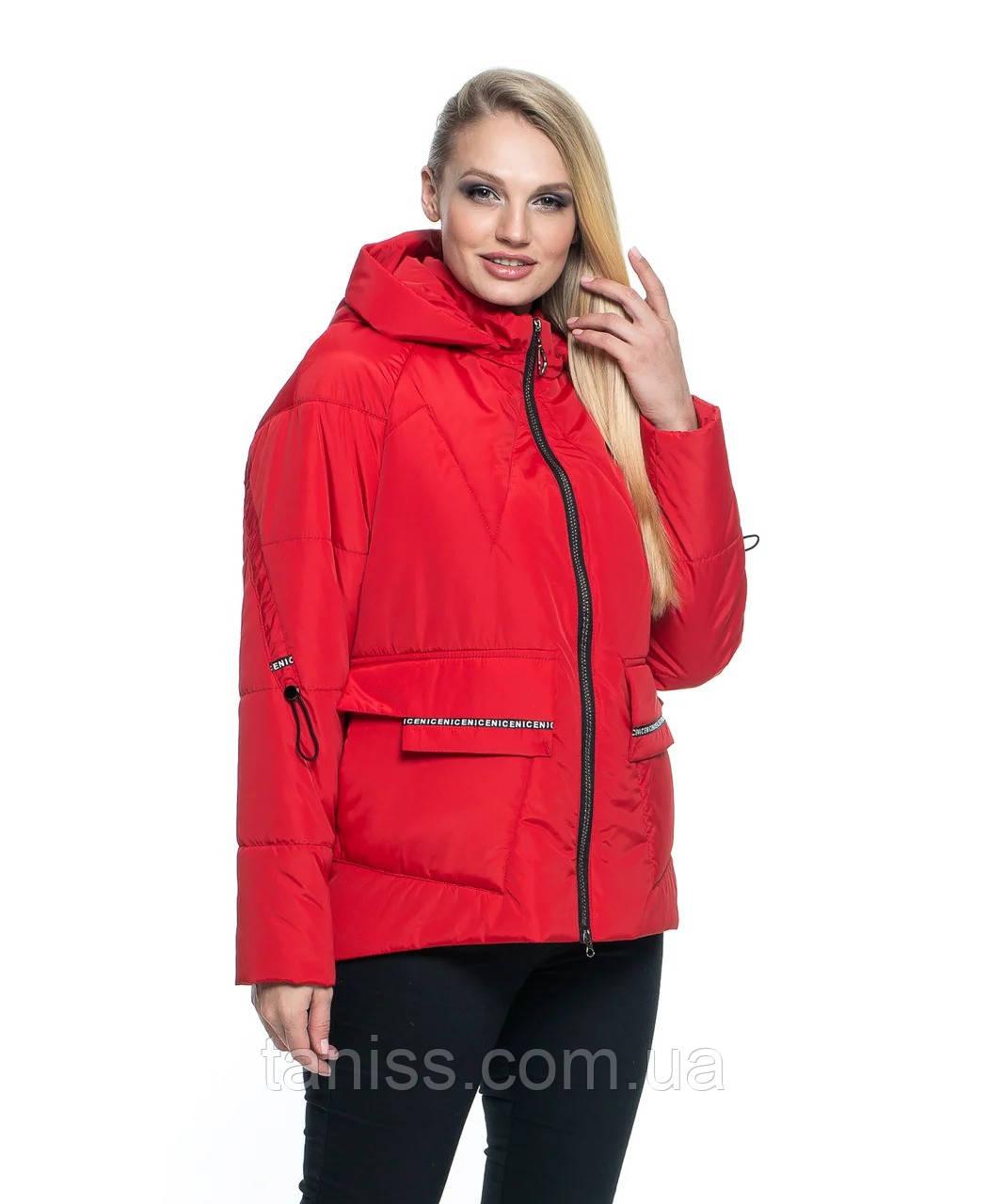 Женская,короткая, демисезонная куртка большого размера, капюшон съемный, р-ры с 44 по 56, красный(103)
