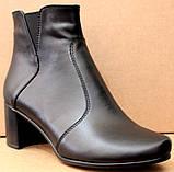 Черевики жіночі чорні шкіряні туфлі на підборах від виробника модель ШБ14Д, фото 2