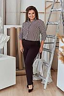 Женский комплект блузка + брюки больших размеров 50, 52, 54, 56, 58, 60 - 467