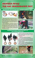 Звалювання дерев діаметром, меншим довжини шини та діаметром до 20 см.Безпека праці під час звалювання лісу.